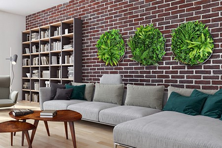 Artificial Green Wall Discs on the wall