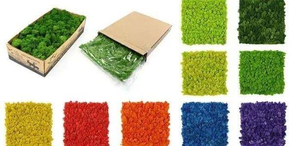 Sunwing products series - moss walls