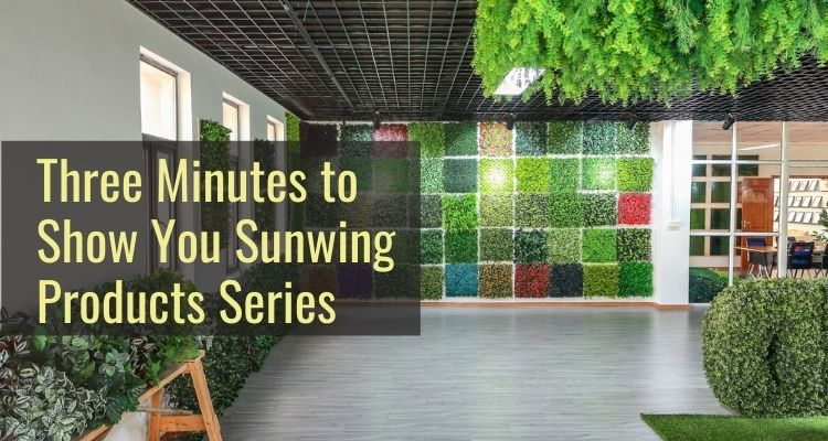 Three Minutes to Show You Sunwing Products Series