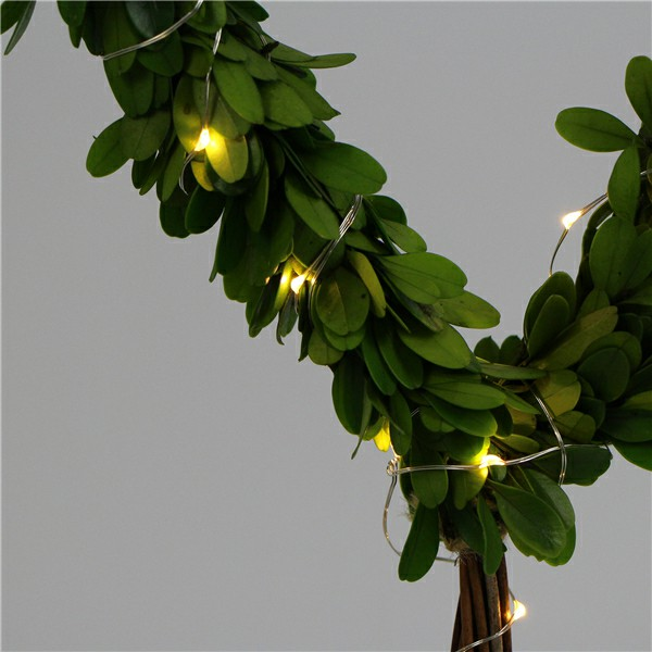 preserved boxwood tree with light