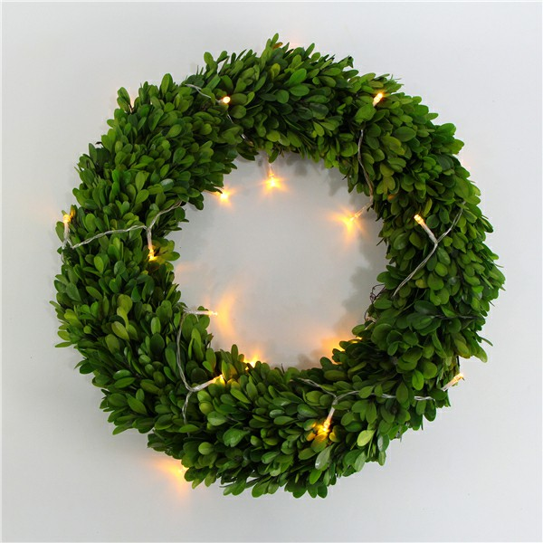 preserved boxwood wreath with light