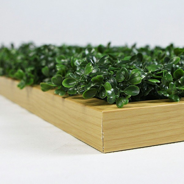 details of artificial framed boxwood