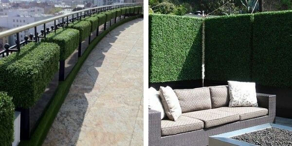 Boxwood Artificial Hedges in Planters