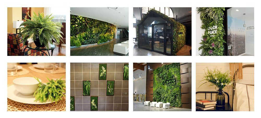 Artificial Leaves Applications