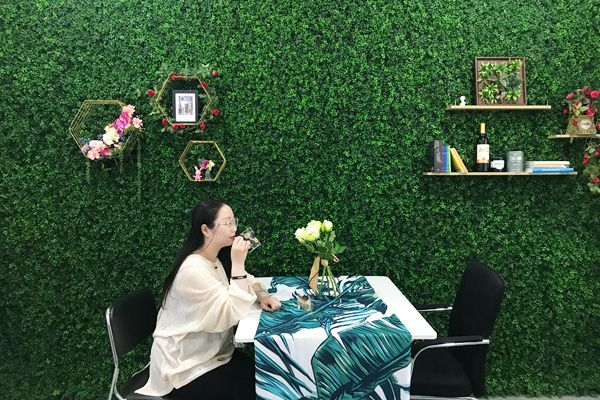 fake plant wall backdrop