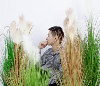 artificial-reed-grass-application