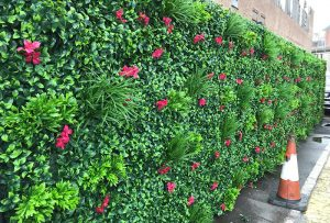 outdoor landscape and fence screen wall garden