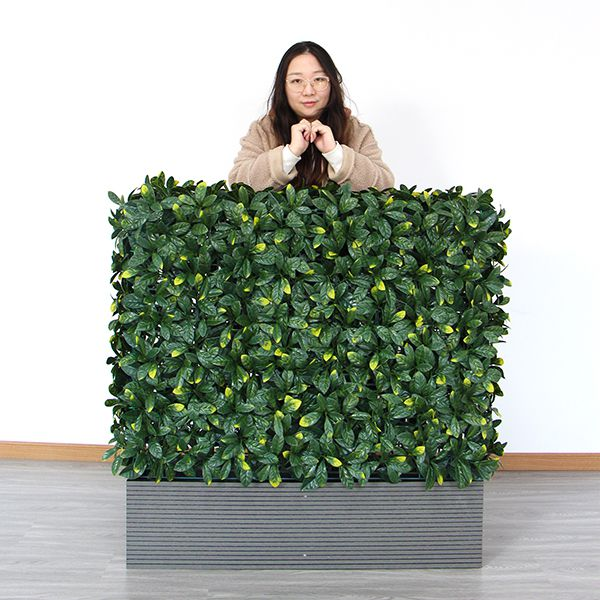 A003 artificial hedges in planters with laurel leaf