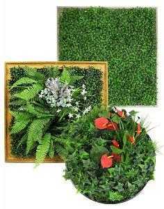 Framed Plants Wall