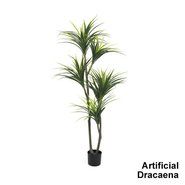 artificial-dracaena