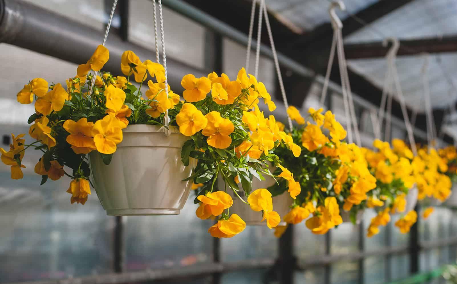 artificial hanging basket outdoor landscape