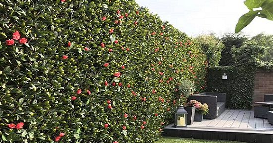 artificial ivy trellis with flowers for privacy screen