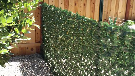artificial hedges ivy roll