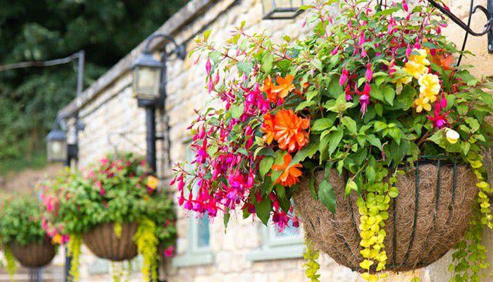 garden landscape of fake hanging baskets