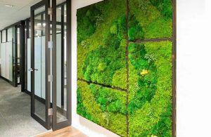 indoor green moss wall design