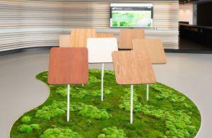 office floor decor with moss
