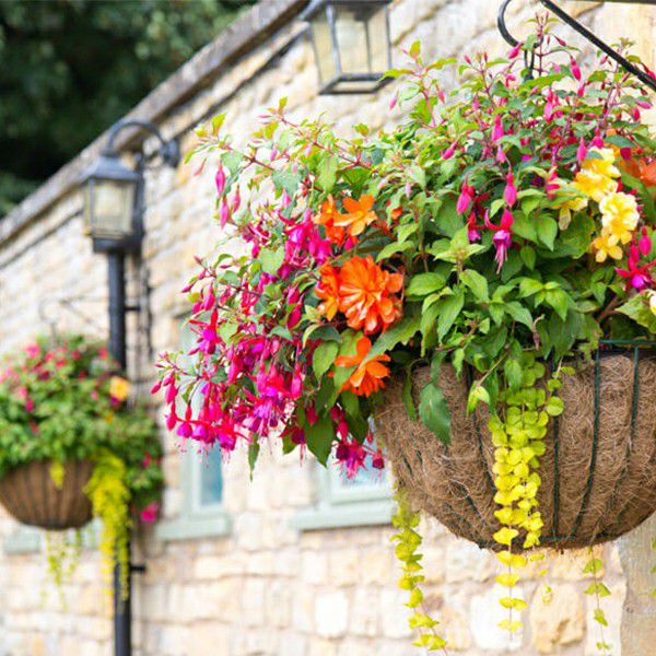 outdoor scene ornamented with artificial basket hanging plants