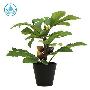 simulated fig potted plants