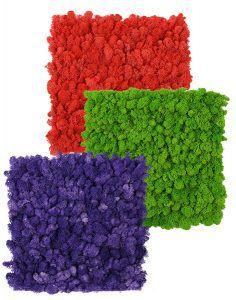 sunwing colorful moss mats
