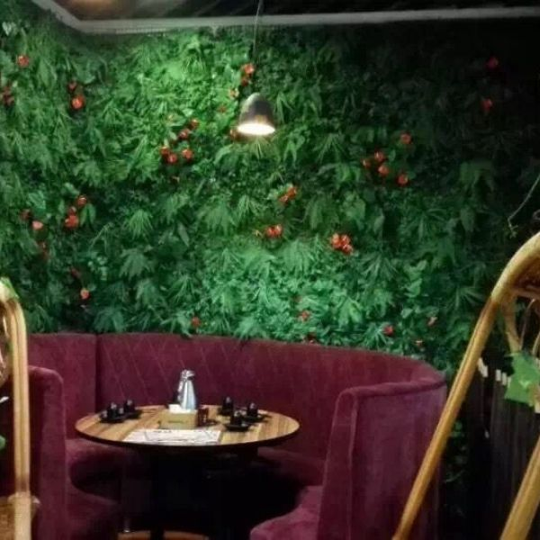 indoor application of artificial wall plants B004