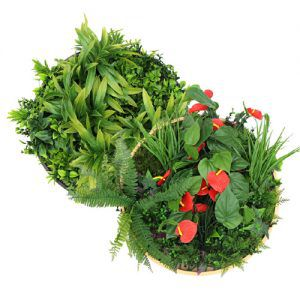 designed-artificial-plant-disc