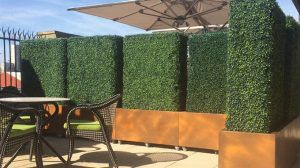 Create Commercial Protected Screen with Artificial Boxwood Planters