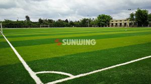 Synthetic Fire Safe Artificial Grass : Turf