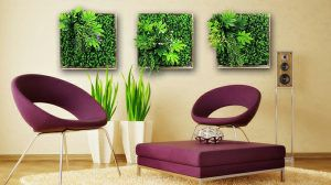 artificial 3D wall plants frames