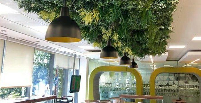 artificial walls with hanging plants