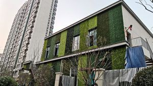 case study of artificial hedge wall