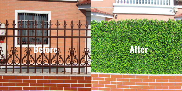 Before and after of the artificial hedges case study