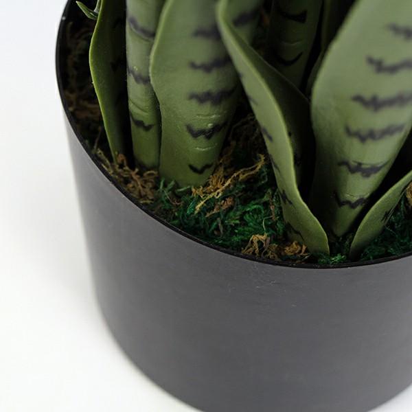 artificial snake plant details