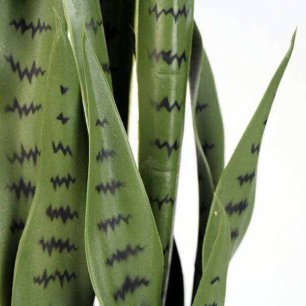 fake snake plant leaves