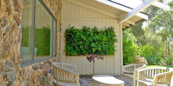 10+ framed plants wall ideas