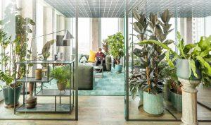 eniuses pick office faux plants