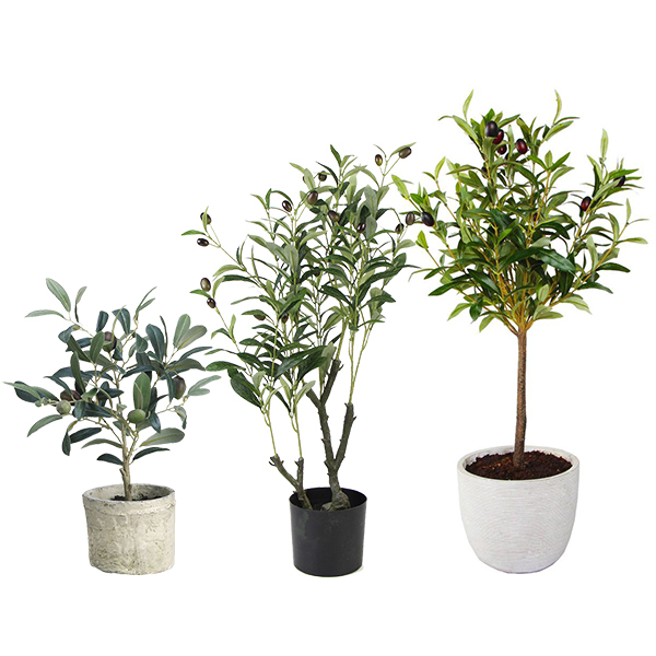 Sunwing new product - artificial olive tree
