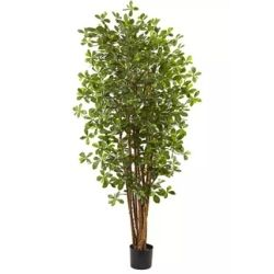 artificial black olive tree
