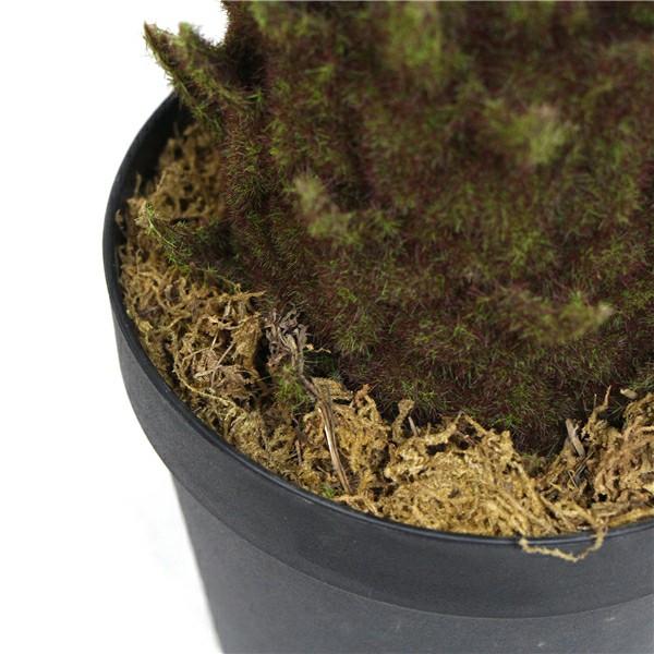 artificial cycad in pot