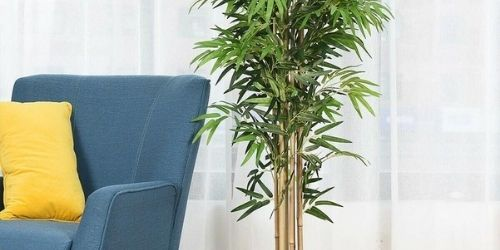 artificial potted bamboo as a decorative accent