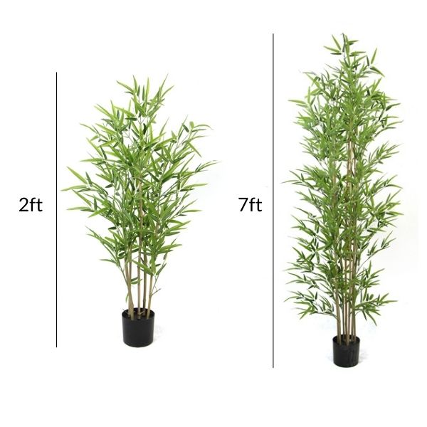 different sizes of silk bamboo plants and trees