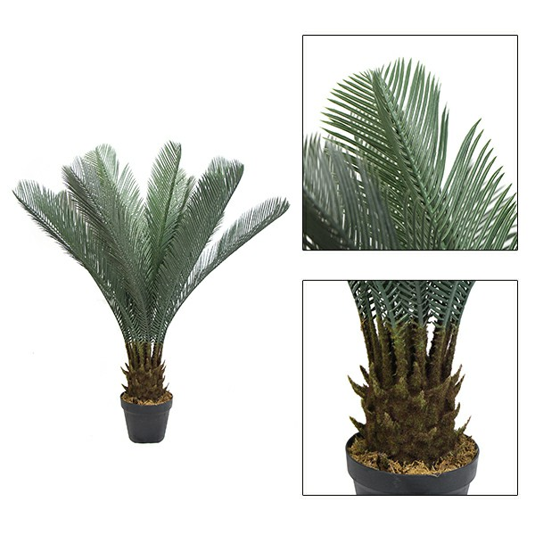 fake potted Cycad details