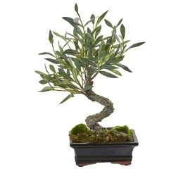 mini faux bonsai olive tree