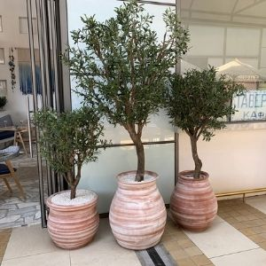 outdoor porch with three fake olive trees in planters