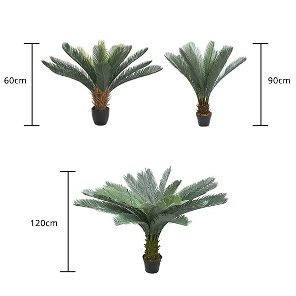 size of Artificial Cycad in pot