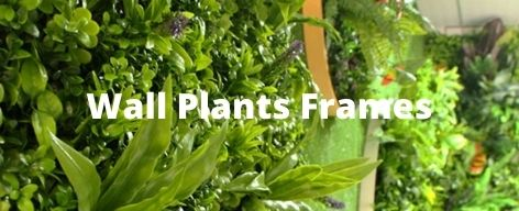 wall plants frames supply