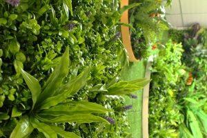 Sunwing artificial wall plants supplier