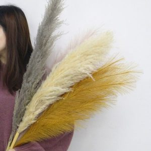 artificial and natural pampas grass wholesale supplier