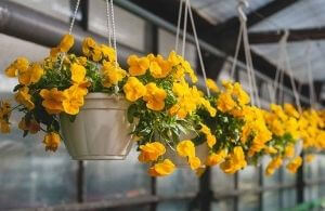 artificial hanging baskets for decor