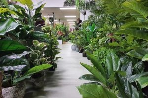 artificial plants and trees supplier manufacturer china
