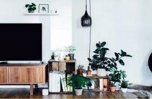artificial plants for home decor